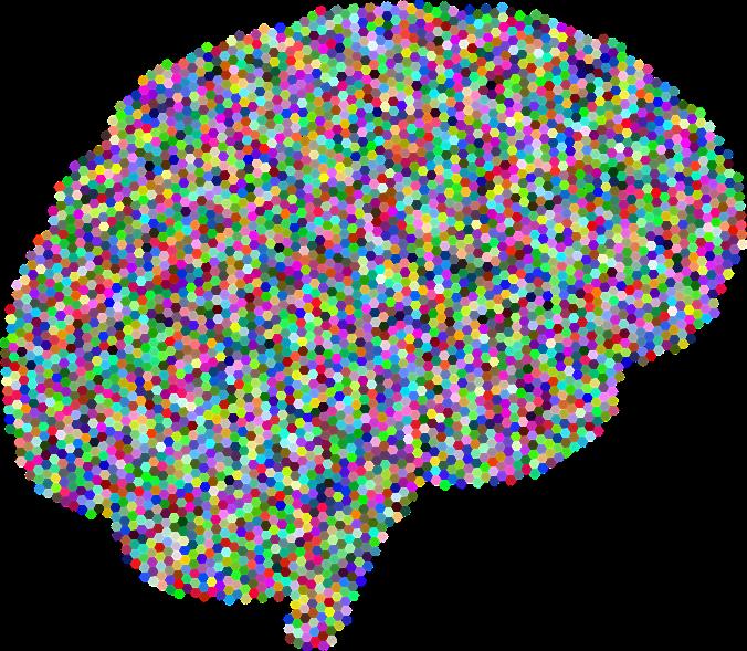 brain-3223582_1280